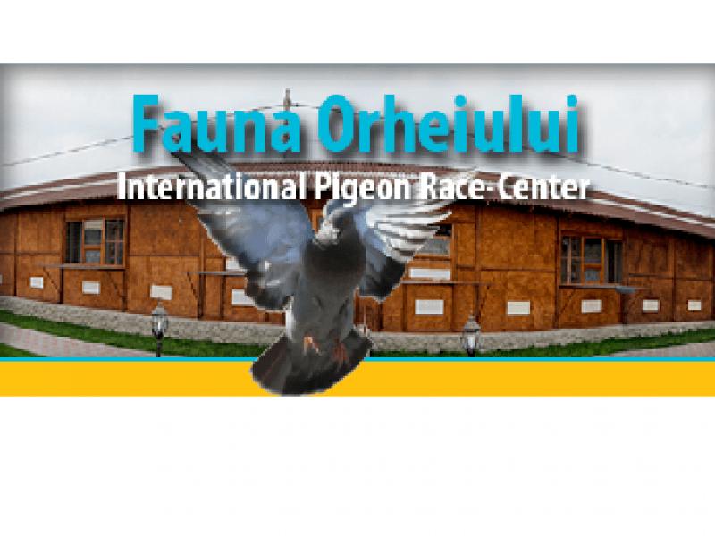 thimg_Fauna-Orheiului-Moldova_800x600