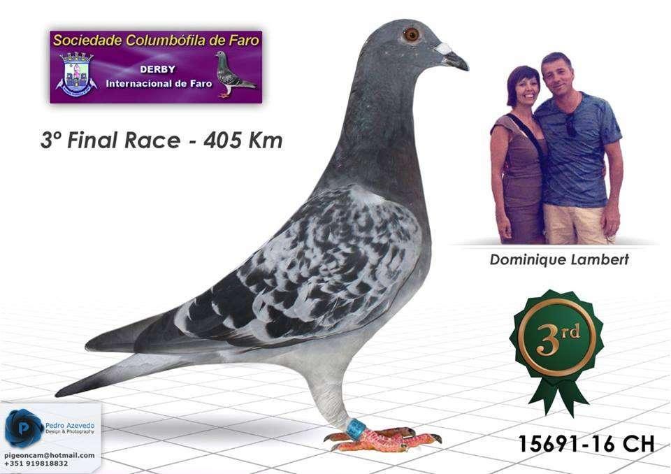 3-clasificado-derby-internacional-faro