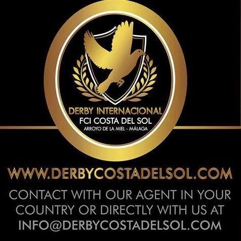 derby-costa-del-sol-2016-logo