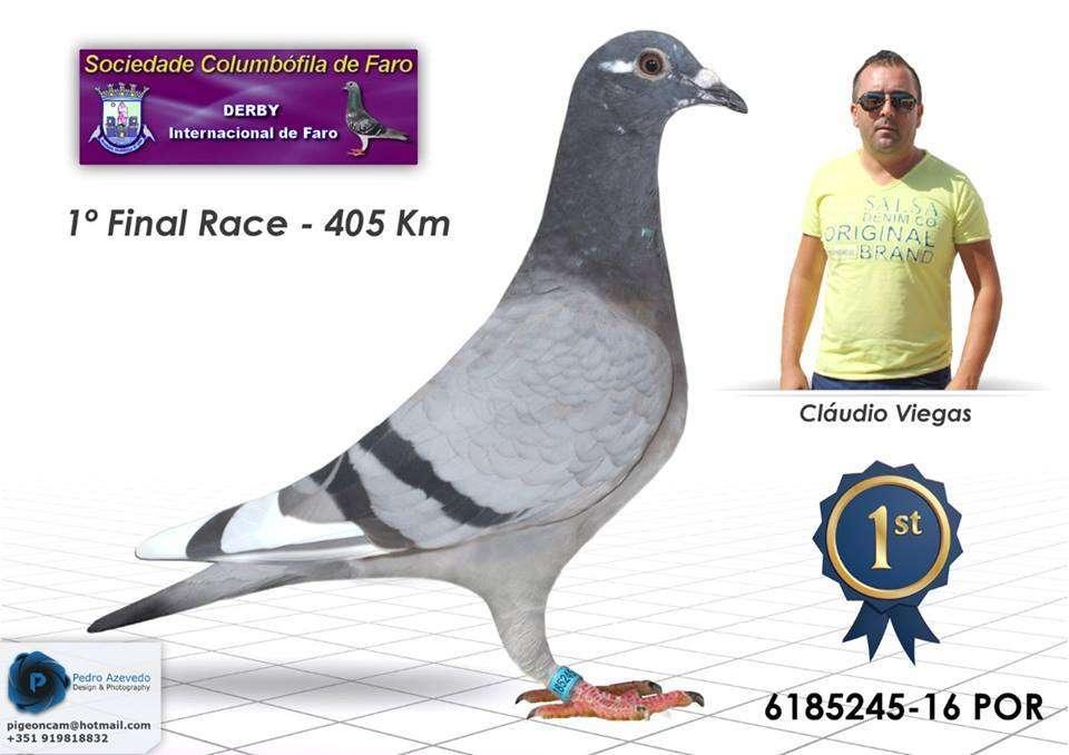 ganador-derby-internacional-faro-2016