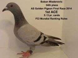 first-ace-final-race