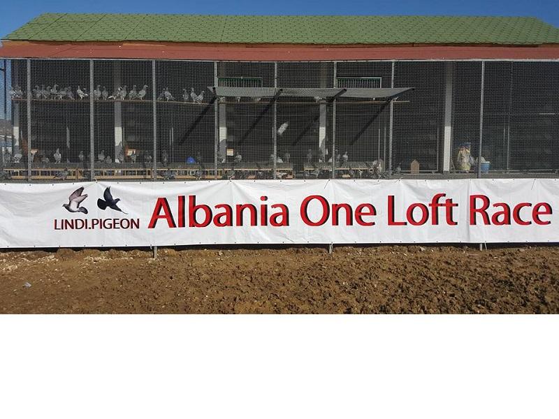 VORE,TIRANA,albania,ONE LOFT RACE,1139