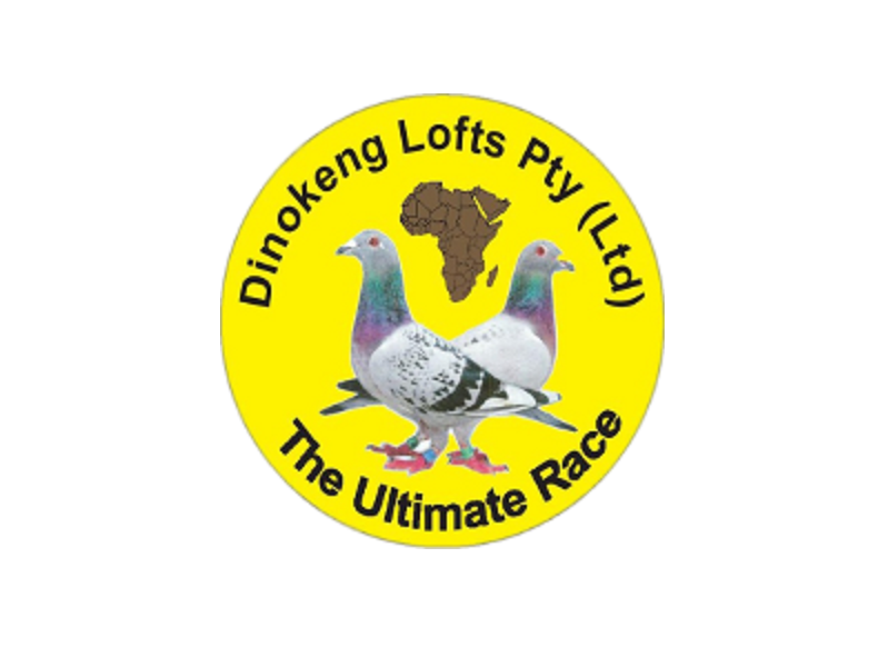 Pretoria,South Africa,ONE LOFT RACE,1149