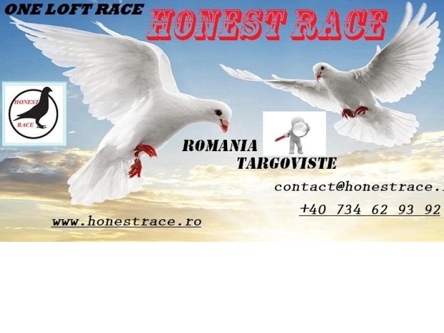 9 STEFAN CEL MARE,TEIS,DAMBOVITA,Romania,ONE LOFT RACE,STEFAN CEL MARE,1073