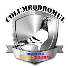 Romania,ONE LOFT RACE,1075